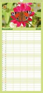 Heimische Insekten Welten - Familienplaner hoch (Wandkalender 20