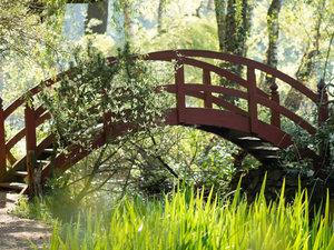 CALVENDO Puzzle Paradiesbrücke im Grünen 1000 Teile Lege-Größe 6