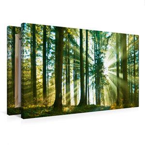 Premium Textil-Leinwand 75 cm x 50 cm quer Durchblick