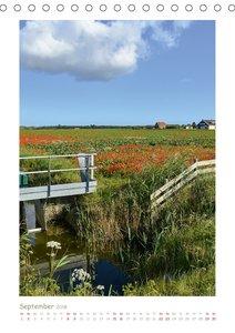 Texel - Momente die verzaubern