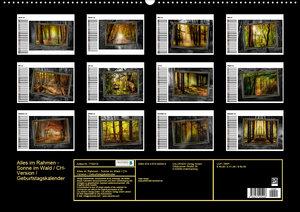 Alles im Rahmen - Sonne im Wald / CH-Version / Geburtstagskalend