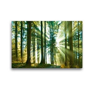Premium Textil-Leinwand 45 cm x 30 cm quer Durchblick