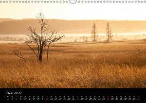 Hochmoor Hohes Venn (Wandkalender 2019 DIN A3 quer)