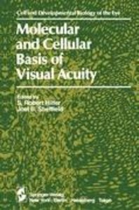 Molecular and Cellular Basis of Visual Acuity