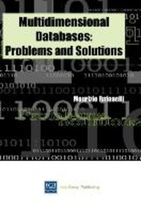 Multidimensional Databases: Problems and Solutions