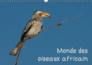 Monde des oiseaux africain (Calendrier mural 2015 DIN A3 horizon