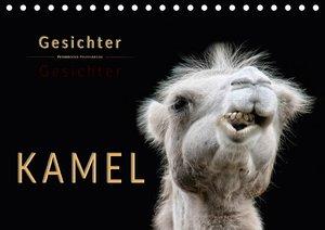 Kamel Gesichter