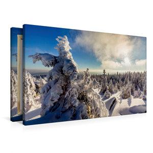 Premium Textil-Leinwand 90 cm x 60 cm quer Eisige Baumskulpturen