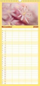 Faszination Blütenwelt - Familienplaner hoch (Wandkalender 2020