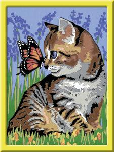 Katze mit Schmetterling