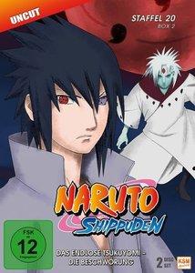 Naruto Shippuden - Staffel 20.2: Episode 642-651