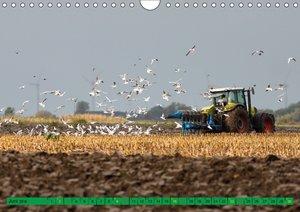 Landwirtschaft - Maschinen im Einsatz
