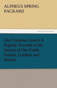 Our Common Insects A Popular Account of the Insects of Our Field