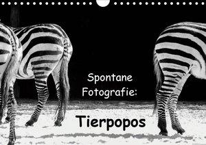 Spontane Fotografie: Tierpopos