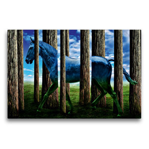 Premium Textil-Leinwand 75 cm x 50 cm quer Das Pferd