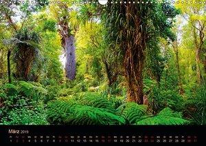 Südseetraum Neuseeland (Wandkalender 2019 DIN A3 quer)