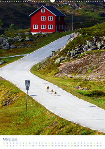 Norwegen - Unterwegs im Fjordland (Wandkalender 2020 DIN A2 hoch