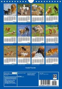 Hunde Freunde (Wandkalender 2020 DIN A4 hoch)