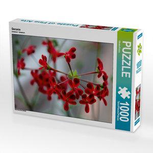 Geranie 1000 Teile Puzzle quer