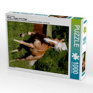 Ein Motiv aus dem Kalender Pferde ... fliegen ohne Flügel 1000 T