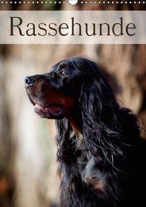 Rassehunde (Wandkalender 2019 DIN A3 hoch)