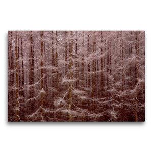 Premium Textil-Leinwand 75 cm x 50 cm quer Gansfelsen