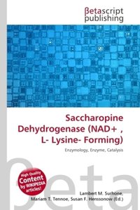 Saccharopine Dehydrogenase (NAD+ , L- Lysine- Forming)