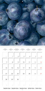 FRUITS SELECTED PAINTINGS BY YANNY PETTERS (Wall Calendar 2020 3