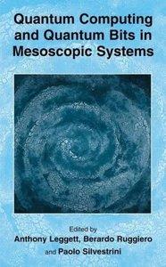 Quantum Computing and Quantum Bits in Mesoscopic Systems