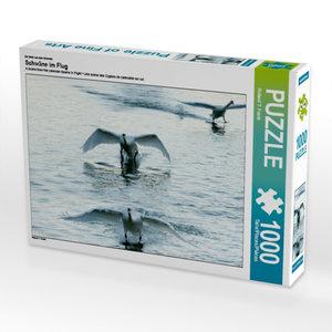 Ein Motiv aus dem Kalender Schwäne im Flug 1000 Teile Puzzle que