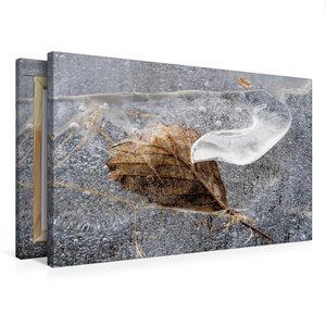 Premium Textil-Leinwand 75 cm x 50 cm quer Blatt in EIs