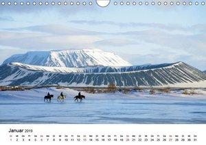 Die Pferde Islands (Wandkalender 2019 DIN A4 quer)