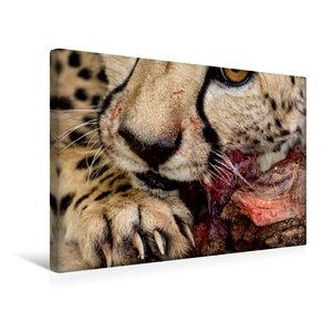 Premium Textil-Leinwand 45 cm x 30 cm quer Wildes Namibia: Gepar