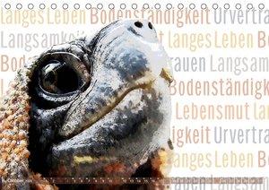 Mein wildes Krafttier (Tischkalender 2020 DIN A5 quer)