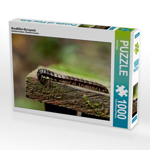 Bandfüßer-Myriapoda 1000 Teile Puzzle quer