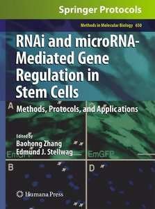 RNAi and microRNA-Mediated Gene Regulation in Stem Cells