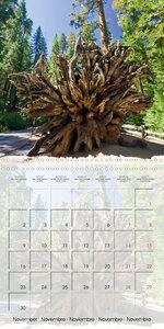 Gorgeous California YOSEMITE NATIONAL PARK (Wall Calendar 2020 3