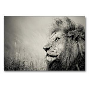 Premium Textil-Leinwand 90 cm x 60 cm quer The Lion King