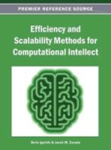 Efficiency and Scalability Methods for Computational Intellect