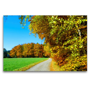 Premium Textil-Leinwand 120 cm x 80 cm quer Goldener Herbst
