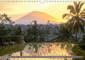 Peter Fischer - Bali 2017