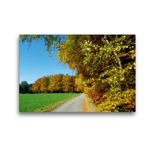 Premium Textil-Leinwand 45 cm x 30 cm quer Goldener Herbst