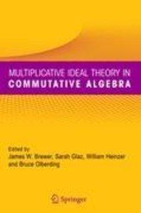 Multiplicative Ideal Theory in Commutative Algebra