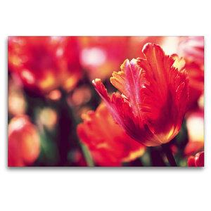 Premium Textil-Leinwand 120 cm x 80 cm quer Ein Bild aus dem Kal