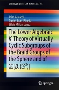 The Lower Algebraic K-Theory of Virtually Cyclic Subgroups of th