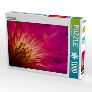 color_impact_I 1000 Teile Puzzle quer