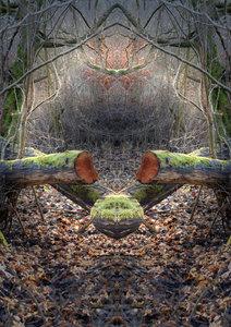 Spiegelwelten - mystische Orte