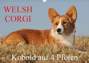 Welsh Corgi - Kobold auf 4 Pfoten (Wandkalender 2019 DIN A3 quer