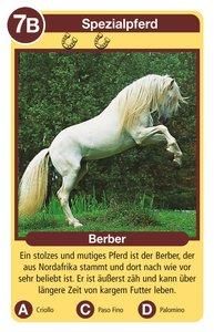 Pferde & Ponies-Quartett