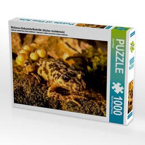 Mallorca-Geburtshelferkröte (Alytes muletensis) 1000 Teile Puzzl